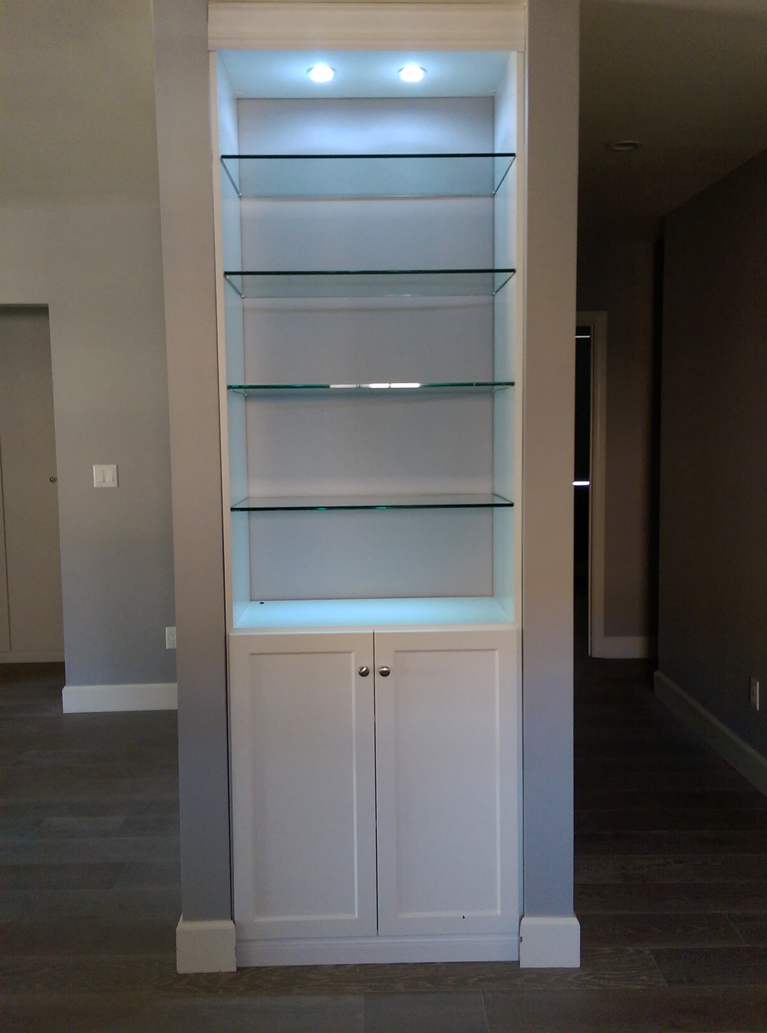 Astounding Display Cabinet Glass Shelves North Hollywood Ca Los Home Interior And Landscaping Palasignezvosmurscom