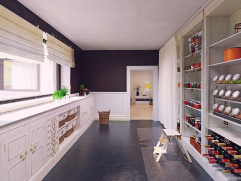Modern pantry interior design